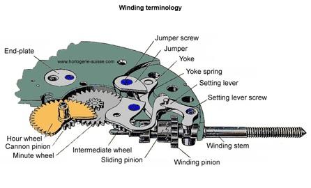 Diagram courtesy of altobelli.com