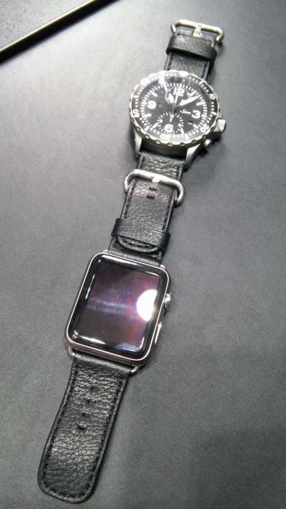 Sinn strap for Apple watch